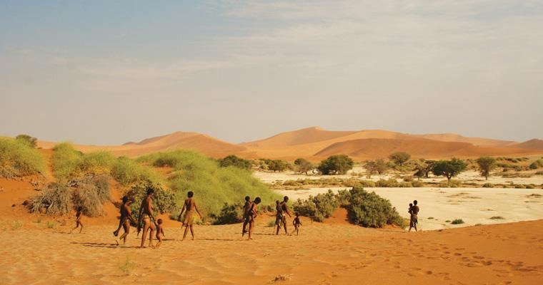 Exploring the Namib Deser together with the San